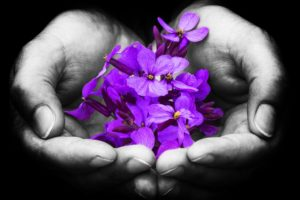 Open hands offering beautiful violet flowers (spiritual self-care)