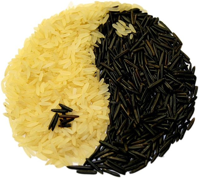 the yin yang symbol made up of white and black rice